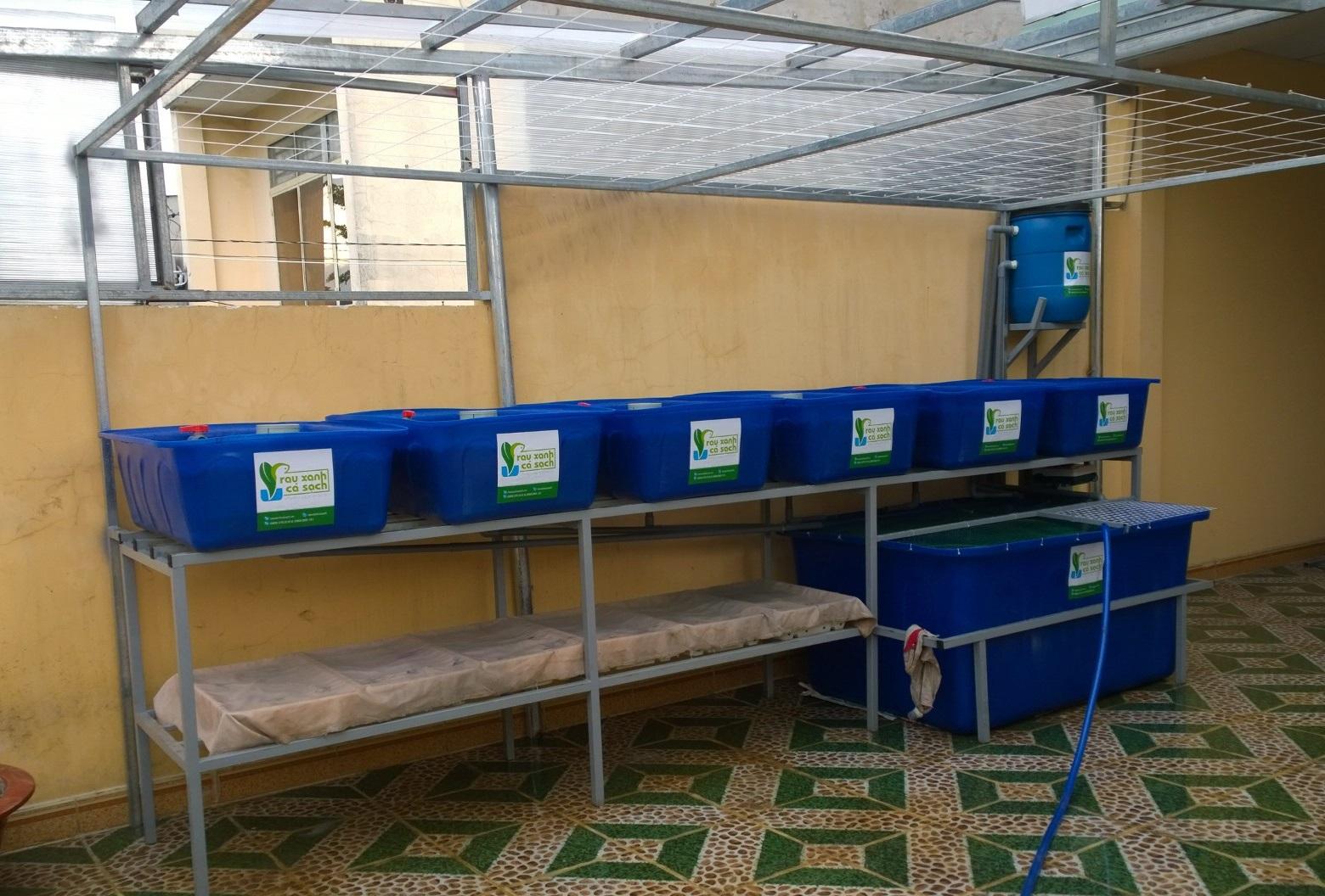 Hệ Aquaponics 6 khay trồng rau 1