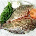 Những loại cá bổ dưỡng cho sức khỏe