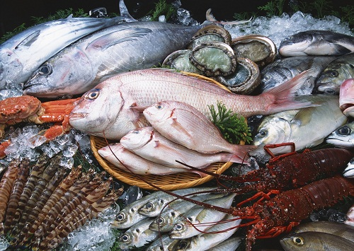 Fishery Products
