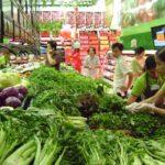 Vấn đề rau sạch của Việt Nam hiện nay