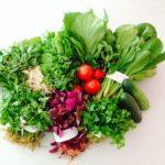 Cách nhận biết rau sạch, rau hữu cơ và rau an toàn