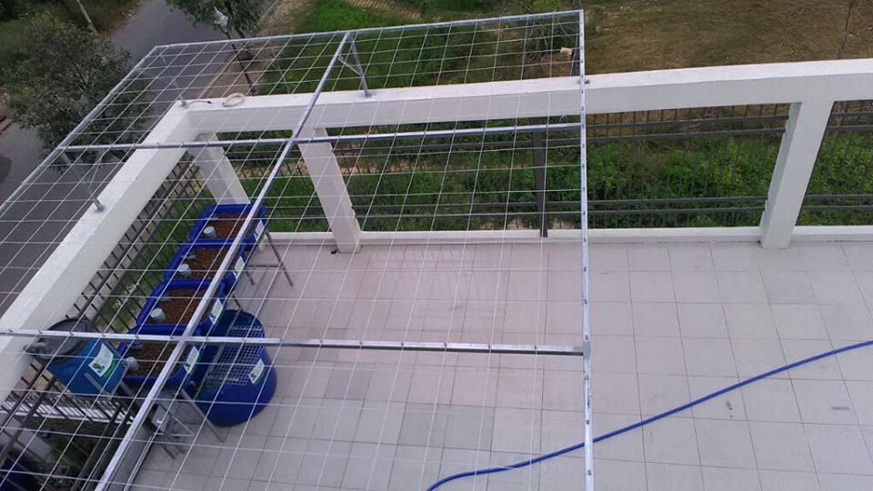 gian-aquaponics-8-khay-rau-xanh-va-gian-aquaponics-mini-4-khay-rau_3