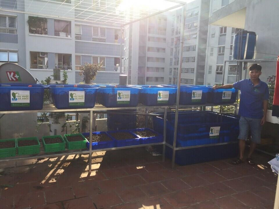 aquaponics-ha-noi