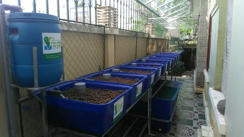 he-aquaponics-8-khay-rau-biet-thu-quan-7-nha-be_2