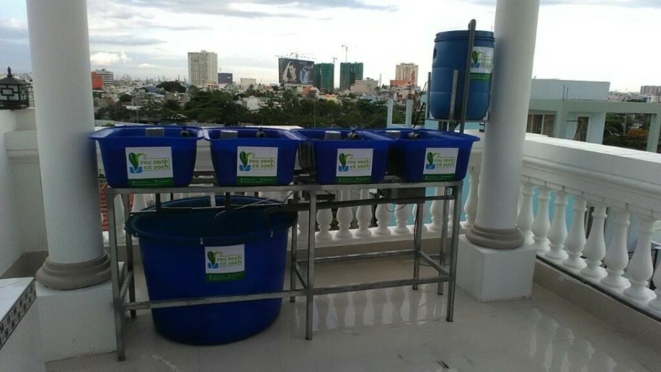 Giàn rau xanh cá sạch Aquaponics mini dành cho sân thượng1