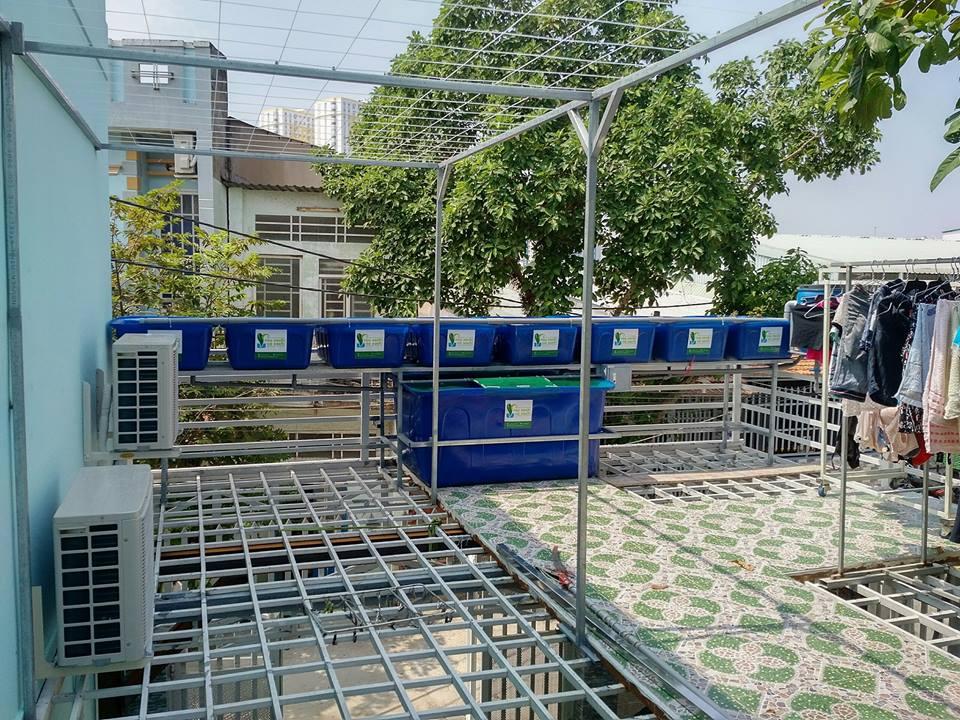he-aquaponics-8-khay-rau-100l-quan-8_1