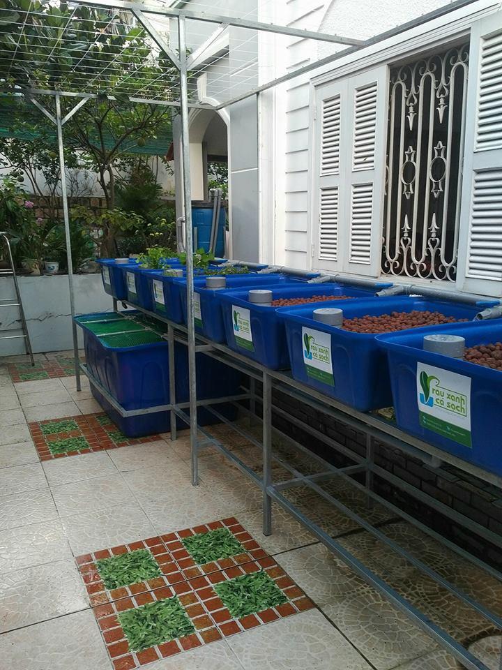 gian-aquaponics-7-khay-rau-100l-tai-nha-trang_3
