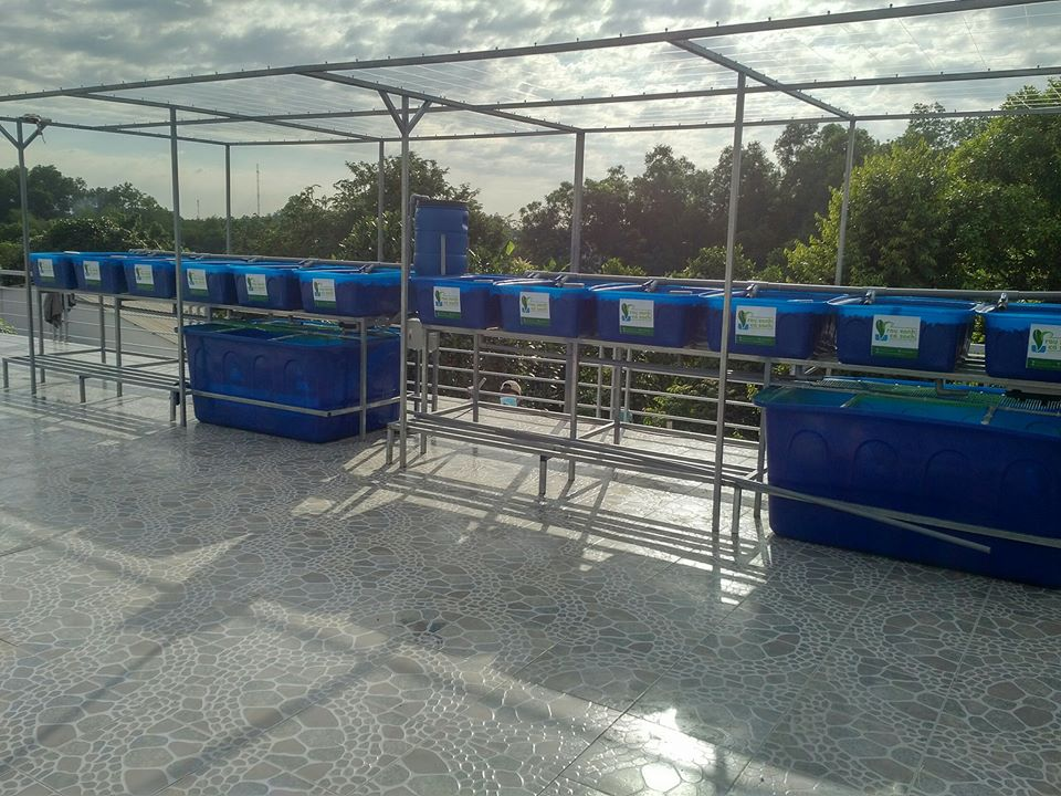 he-aquaponics-12-khay-rau-100l-2-ho-ca-750l-1