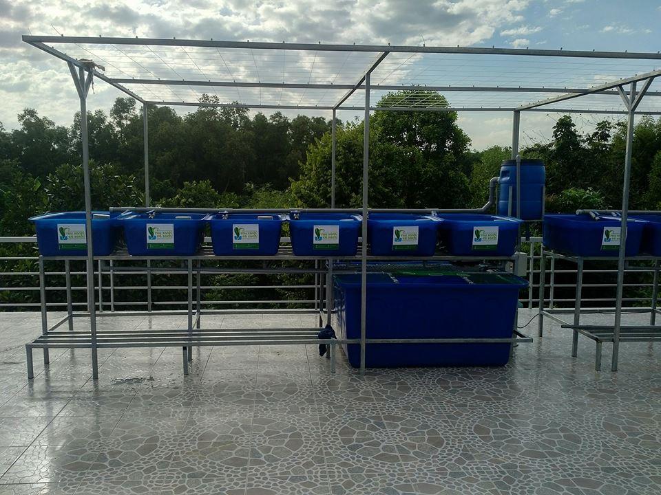 he-aquaponics-12-khay-rau-100l-2-ho-ca-750l-2