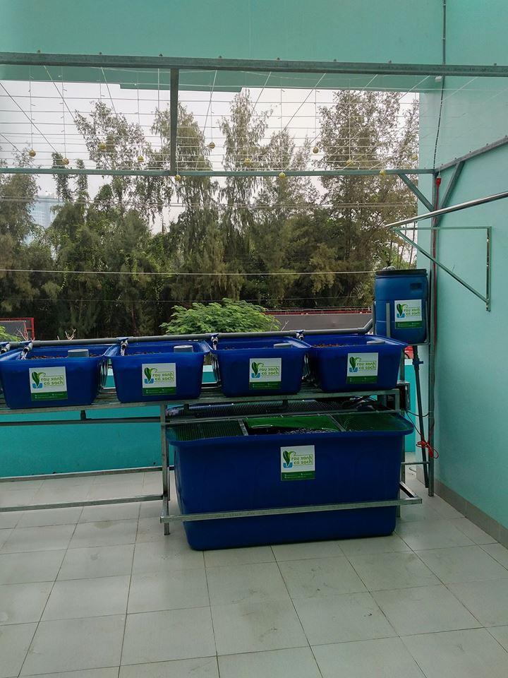 he-aquaponics-5-khay-rau-100l-ho-ca-750l-1