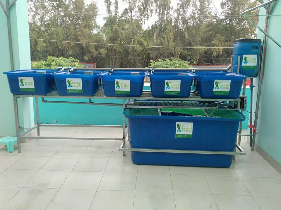 he-aquaponics-5-khay-rau-100l-ho-ca-750l