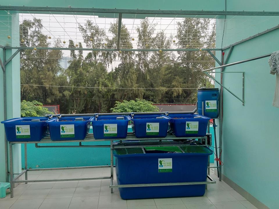 he-aquaponics-5-khay-rau-100l-ho-ca-750l-2
