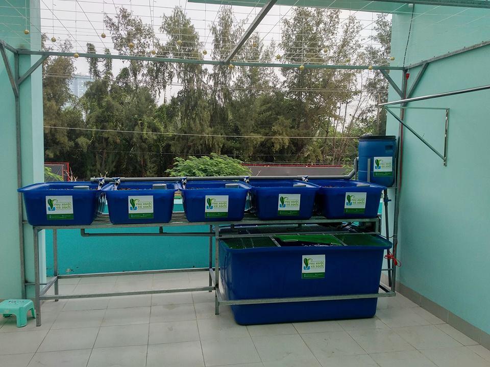 he-aquaponics-5-khay-rau-100l-ho-ca-750l-3