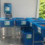 Aquaponics mô hình trồng rau kết hợp nuôi cá