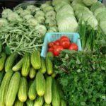 Tại sao nên tự trông rau xanh sạch