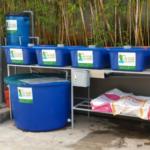 Tự làm giàn trồng rau sạch Aquaponics tại nhà