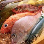 Nếu không muốn hủy hoại sức khỏe thì không nên ăn nhiều những loại cá này