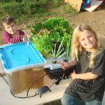 Cùng trẻ khám phá Aquaponics – Học mà chơi, chơi mà học
