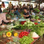 Nếu không biết nguồn gốc của rau thì nên hạn chế mua