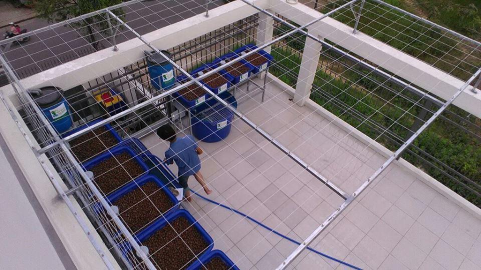 gian-aquaponics-8-khay-rau-xanh-va-gian-aquaponics-mini-4-khay-rau_1