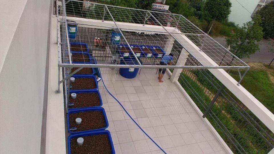 gian-aquaponics-8-khay-rau-xanh-va-gian-aquaponics-mini-4-khay-rau_2