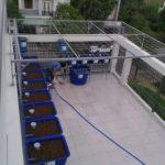 Dịch vụ lắp đặt trồng rau nuôi cá Aquaponics tại nhà