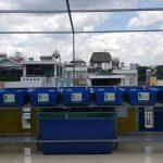 Giá trị thiết thực của hệ thống trồng rau sạch trên sân thượng nhà phố