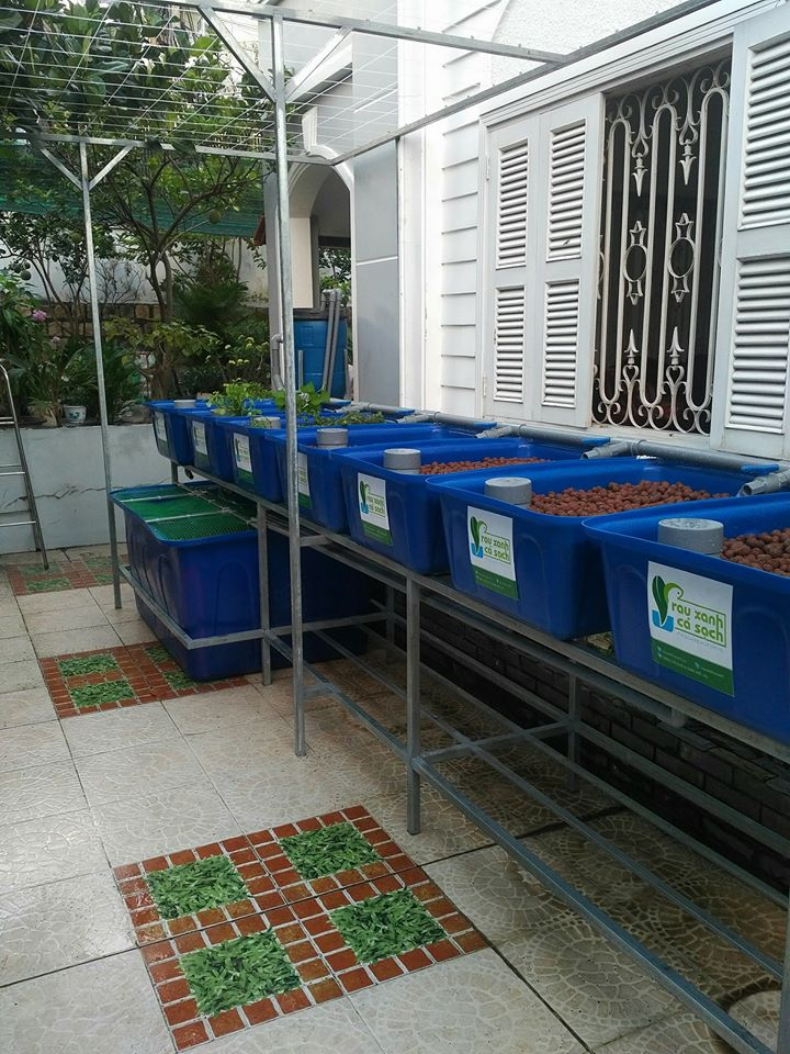 gian-aquaponics-7-khay-rau-100l-tai-nha-trang_2