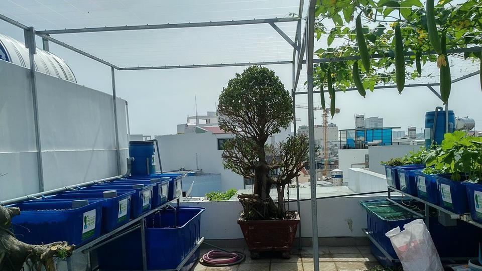 he-aquaponics-5-khay-rau-100l-ho-ca-750l_1