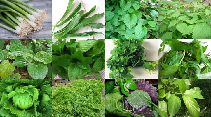 Các loại rau củ nên trồng vào tháng 4 dương lịch-12
