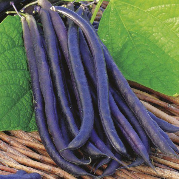 Những loại rau củ thích hợp cho thời tiết tháng 10-17